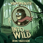 e-voyage-vaponaute-into-the-wild
