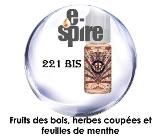 221-bis-e-spire-e-liquide