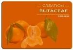 e-liquide_francais_MildDream_mandarine-